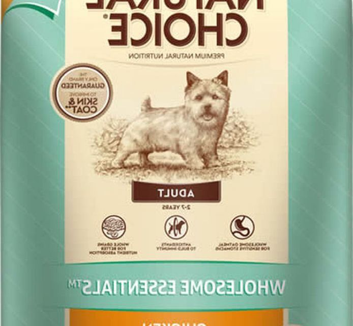 Is Chicken And Rice Healthy For Dogs