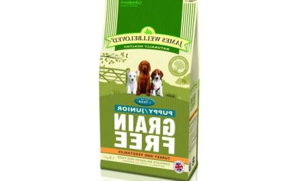 Why is junior dog food grain free