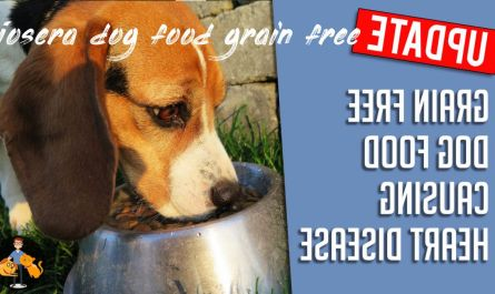 Things you should know josera dog food grain free