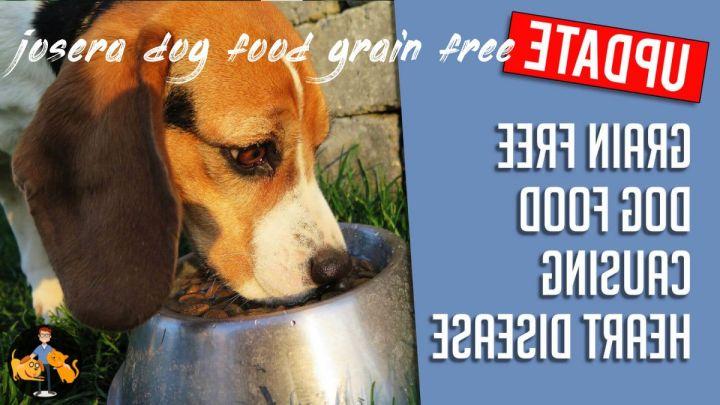Josera Dog Food Grain Free
