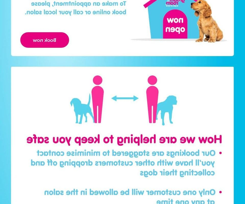 At Home Dog Grooming Services How To Find