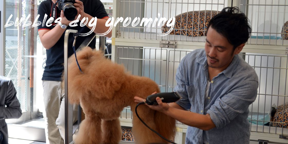 bubbles dog grooming Review