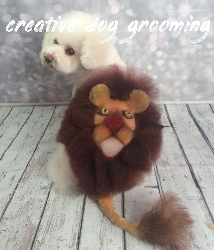 creative dog grooming Buyer Guide