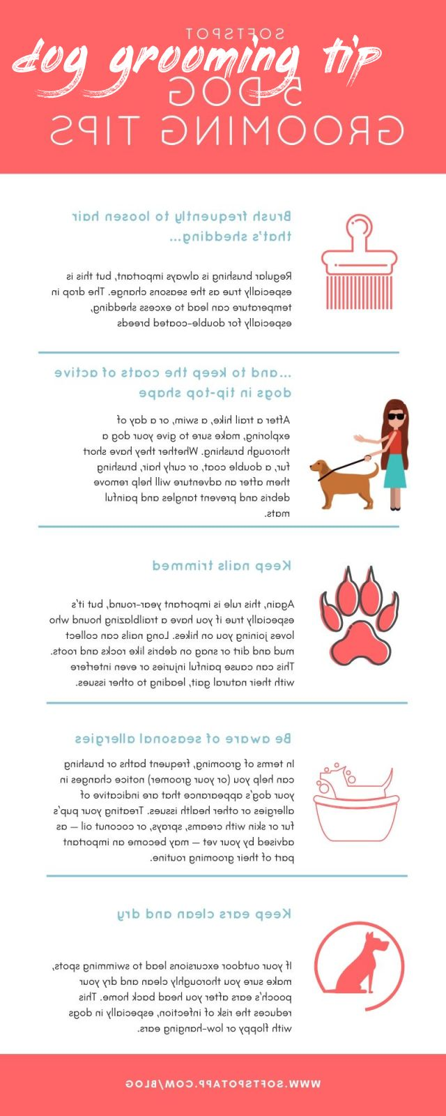 dog grooming tip How To Find