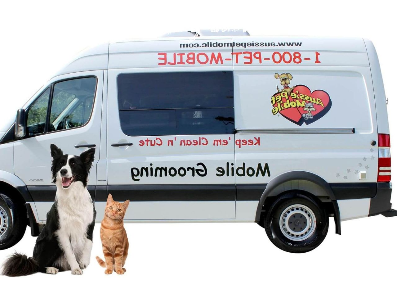 mobile dog grooming austin Buyer Guide