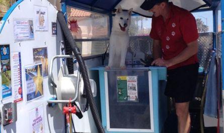 mobile dog grooming in las vegas Review