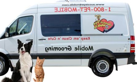 mobile dog grooming local