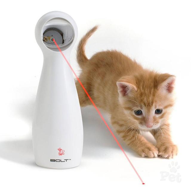 The Best Toys To Purchase For Your Cat