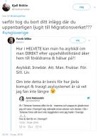 Amir_asylskäl