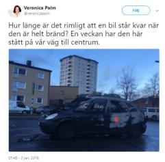 Veronica_Palm_bilbrand