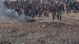 Gaza_004