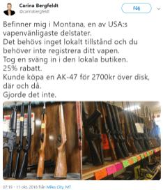 SVT_Carina_Bergfeldt
