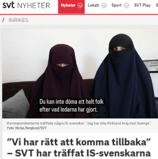 SVT_IS-svenskarna