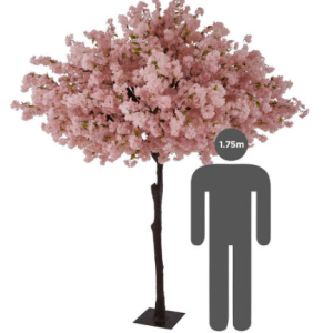 https://i0.wp.com/pettey-tredoux.co.za/wp-content/uploads/2020/07/Cherry-Tree-Pink-2.png?resize=300%2C300&ssl=1