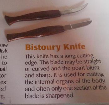 Bistoury Knife