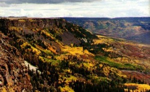 scenic-drive-in-colorado-grand-mesa-scenic-and-historic-byway-ga-4