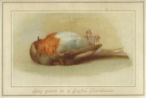 Vintage Christmas--Dead robin