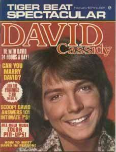 Tiger Beat David Cassidy