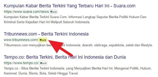3 Cara Blokir Situs Tertentu dari Hasil Pencarian Google 12