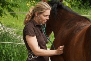 Pferde mit Mag. Heidi Hirscher