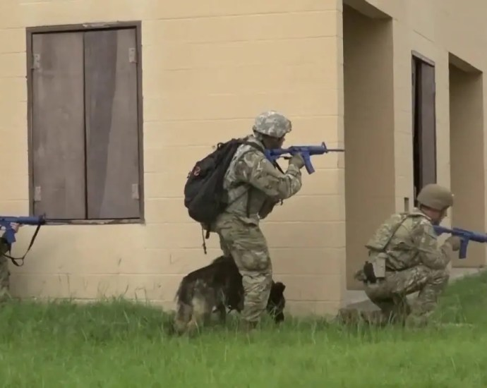 Training Dogs for War 904th Military Dog Detachment U.S. Army