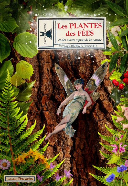 plantesdesfees