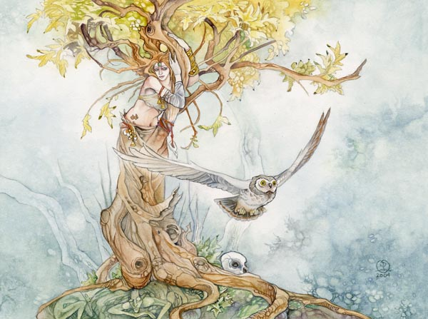 Dessins illustrations peintures de f es elfes lutins stephanie pui mun law f es elfes - Dessin elfes et fees ...