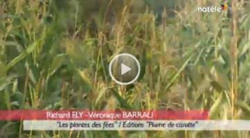 reportage-plantes-fees-richardely1