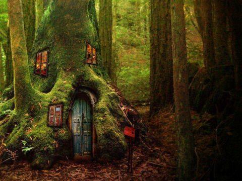 10 maisons extraordinaires et f eriques f es elfes lutins peuple f erique le petit. Black Bedroom Furniture Sets. Home Design Ideas
