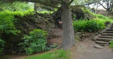 Sur la trace des elfes en Islande : Hafnarfjördur
