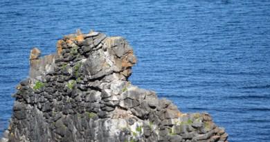 Voyage en Islande – Le Troll de Hvítserkur