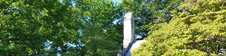 071716-bell-tower-through-trees