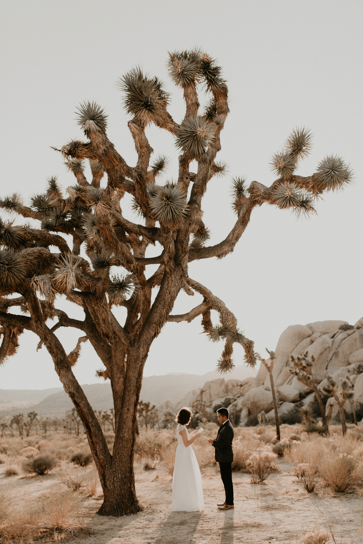 , Joshua Tree Elopement