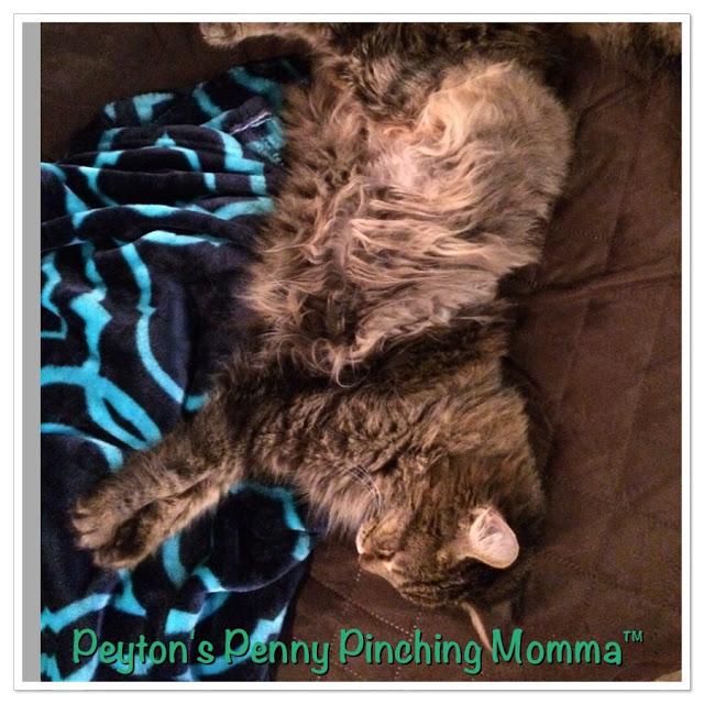 Sebastian Peyton's Penny Pinching Momma