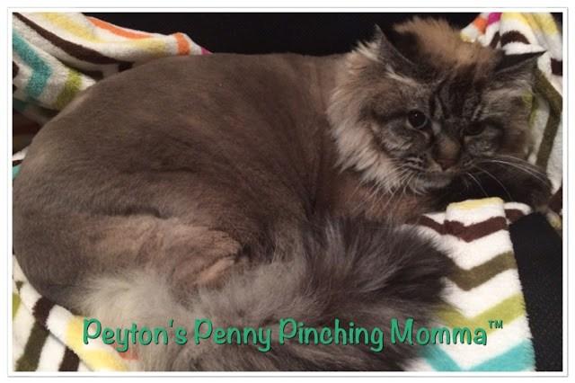 Sophia Peyton's Penny Pinching Momma