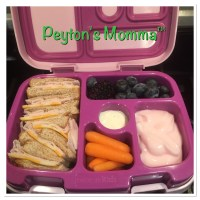 Turkey and Cheese Bento Box