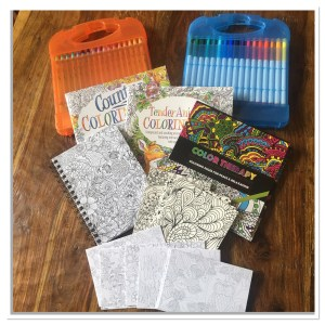Oriental Trading Company Adult Coloring Supplies