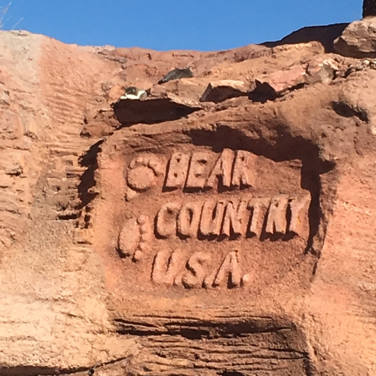Bear Country USA Sign
