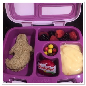 Kids Bento Box Lunch Idea