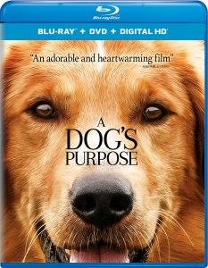 A Dog's Purpose Giveaway