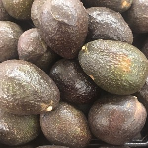 Fall in Love with Hass Avocados