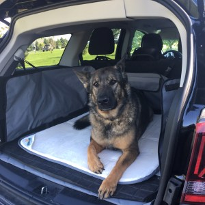 Let Your Pup Ride in Comfort with Squishy Mats