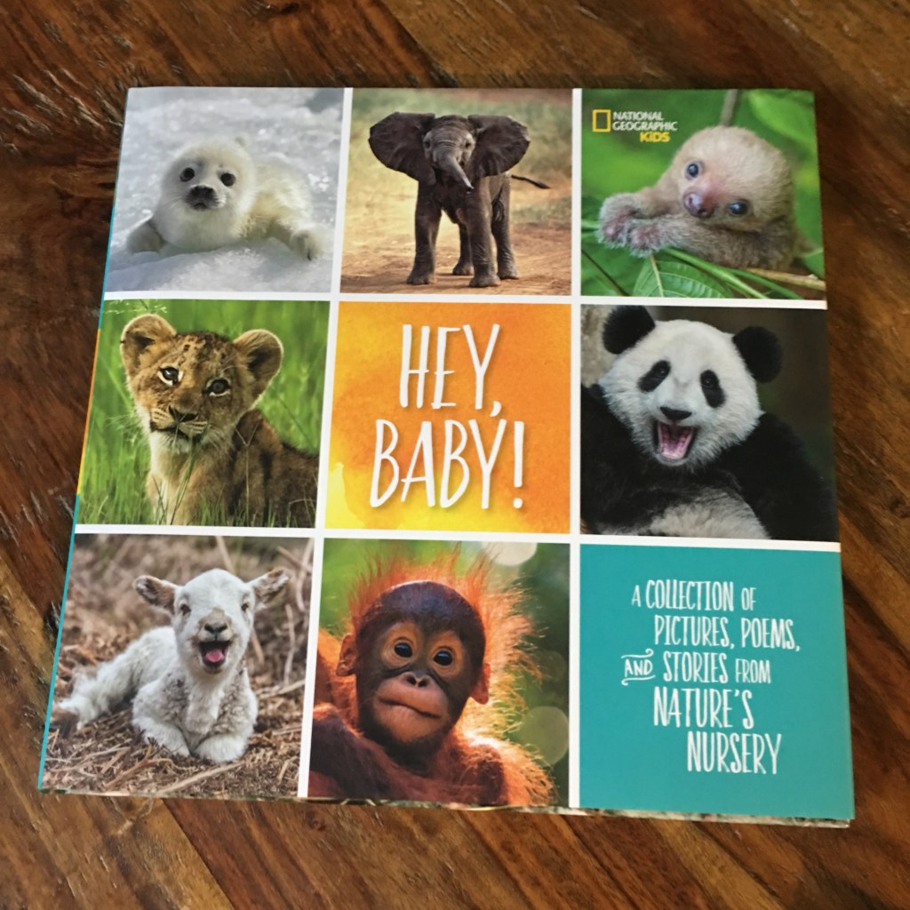 Hey, Baby by National Geographic kids