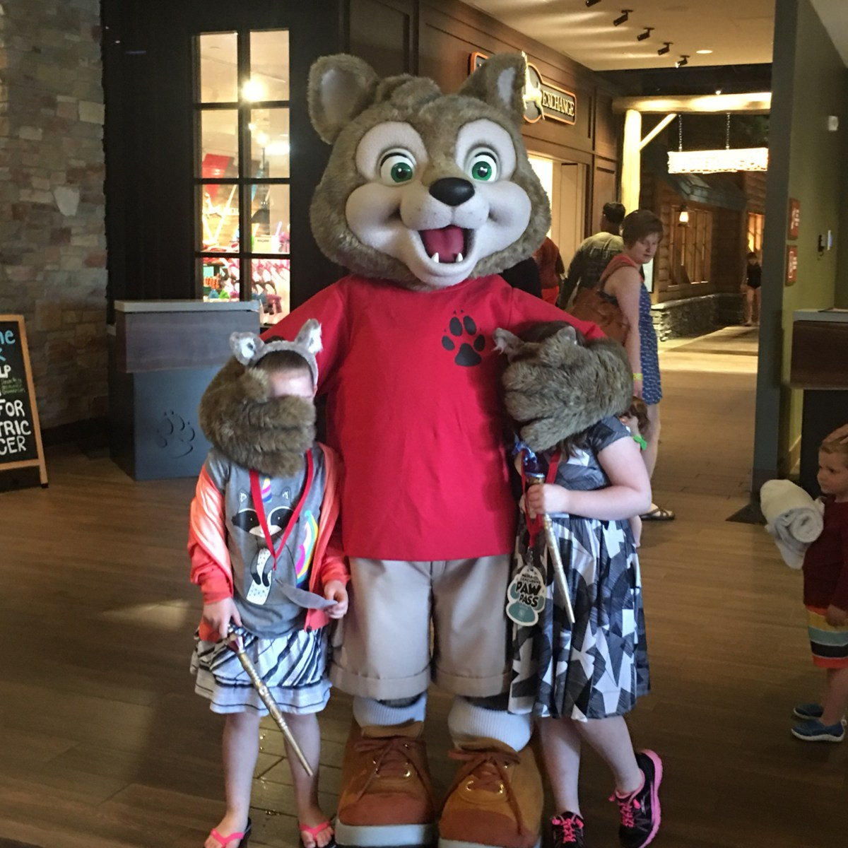 A Day of Play with Great Wolf Lodge Minnesota