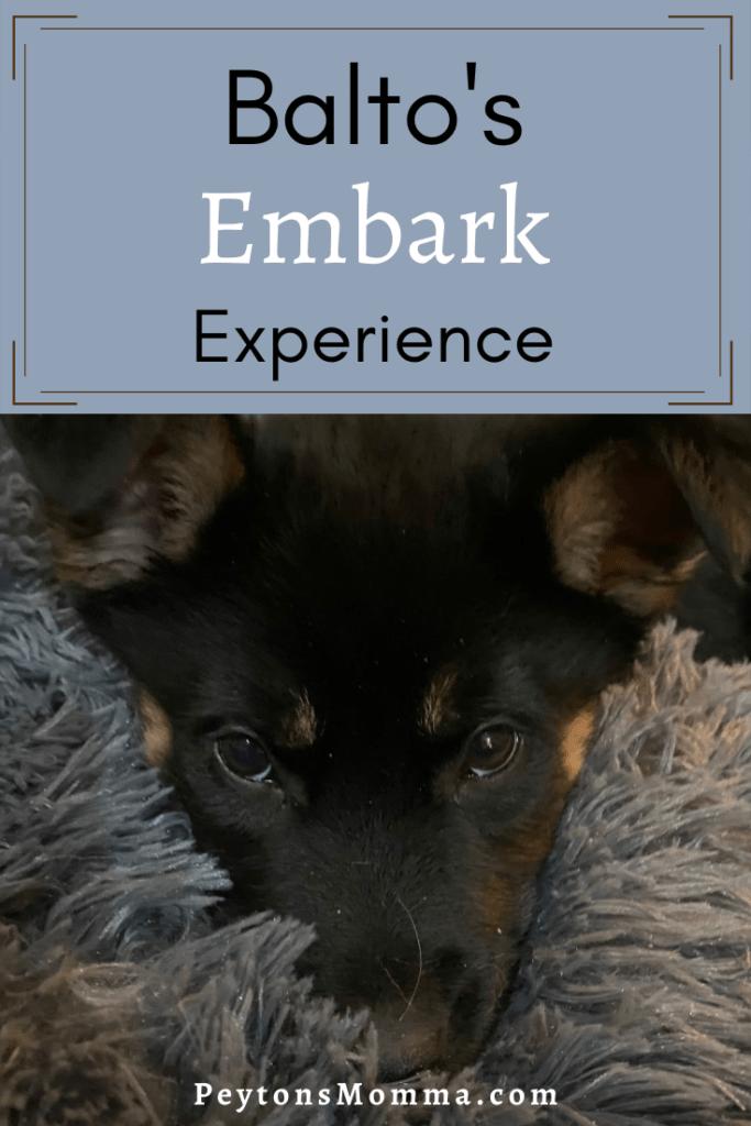 Embark Experience