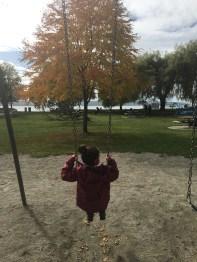 Esses playgrounds, essa vista, o outono...