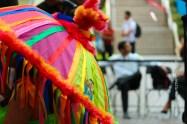 mia-simo-pezmapache-carnaval-2013-republica-dominicana-6857