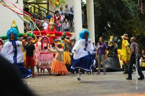mia-simo-pezmapache-carnaval-2013-republica-dominicana-7296