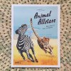 Animal Allstars: African Animal Facts and Folklore