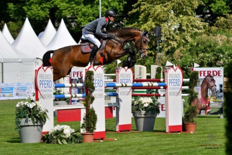 Training_Pferd&Reiter